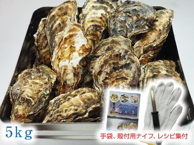 広島かきの缶かん焼きセット5kg