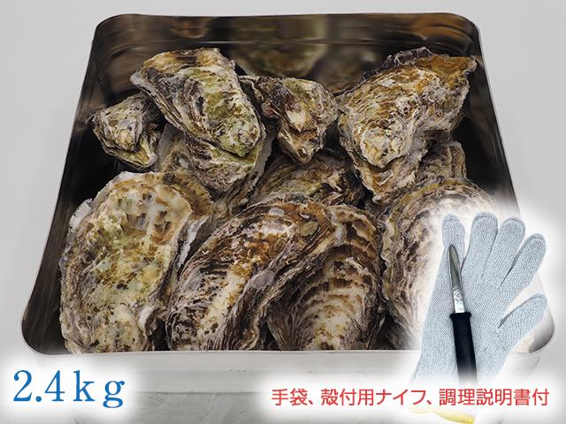 【冷凍】広島かきの缶かん焼きセット2.4kg
