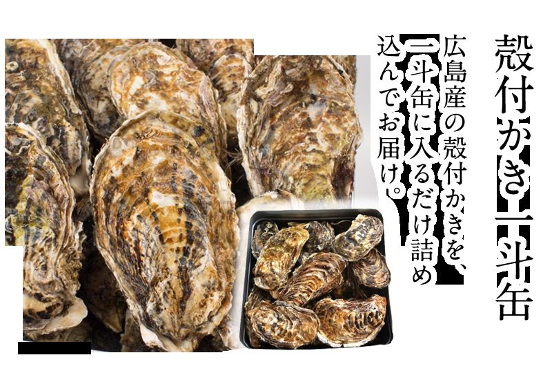 広島産 特選殻付かき一斗缶
