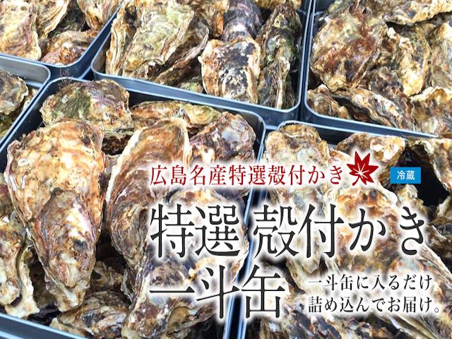 広島県産 殻付かき 一斗缶