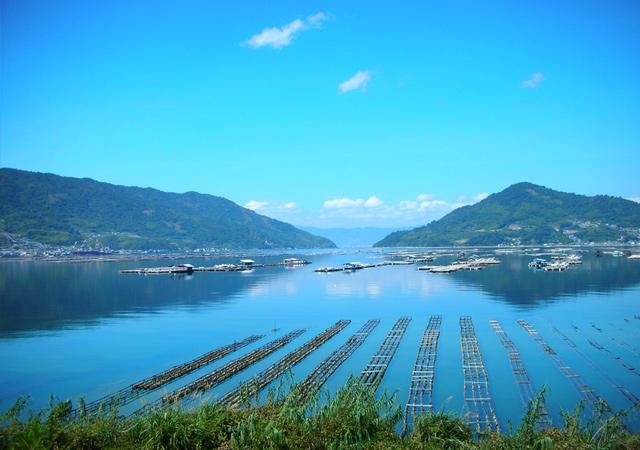 広島かき広島湾イメージ