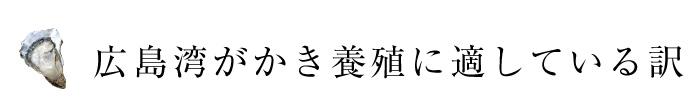 広島湾がかき養殖に適している訳